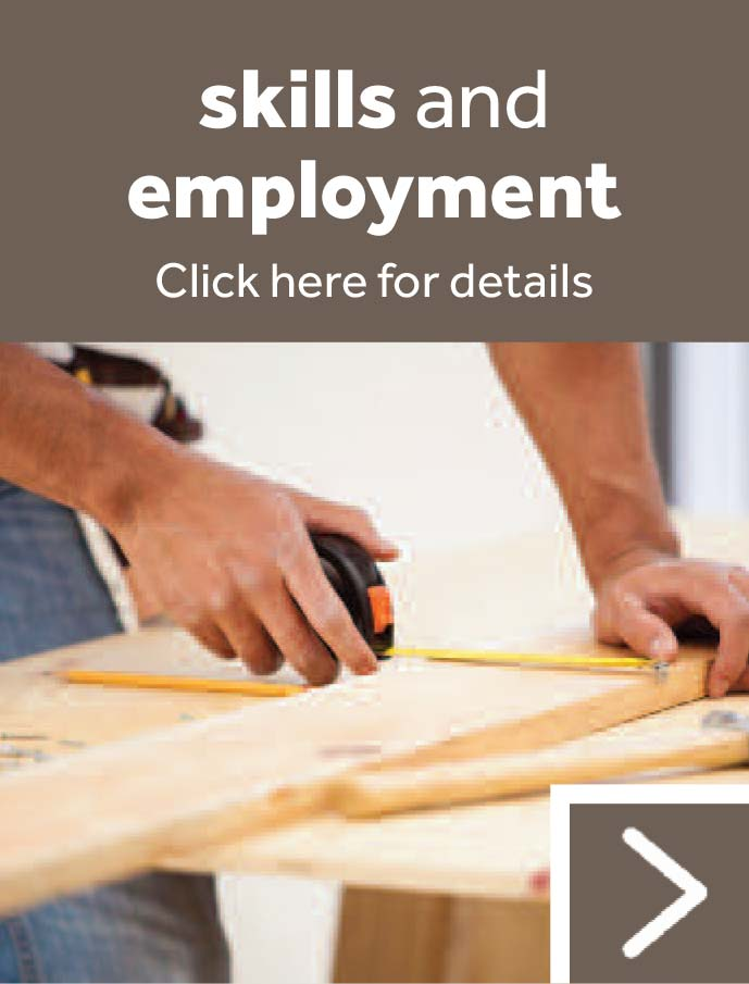 Skills and Employment